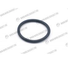O-кольцо 095-1698 (WG)