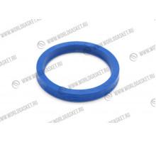 Кольцо уплотнительное 167-2300/5J-8175/439-2697 (WG)