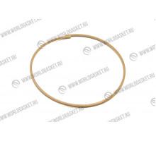 Кольца тефлоновые  9W-6991/6P-7985 (WG)